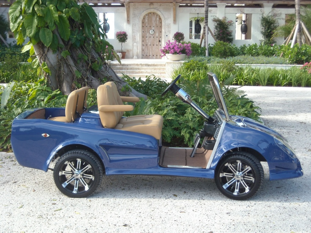 Custom Modified Carts - Florida - New, Used, Rebuilt, and